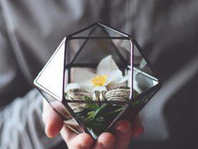 几何玻璃盆栽