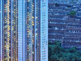 香港摄影作品 蓝色森林 The Blue Moment